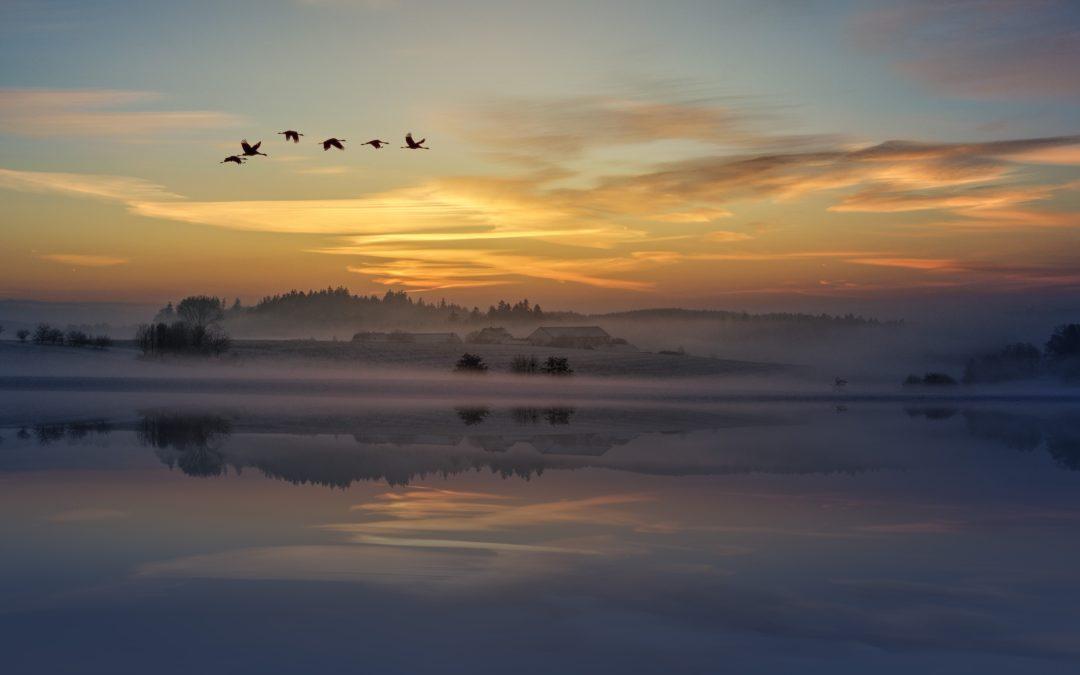 It's a new dawn – Awaken and shine!
